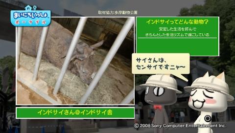 torosute2009/5/28 アジアの沼地 17