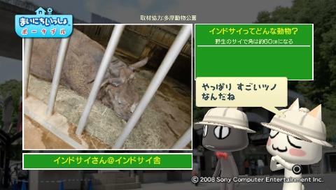 torosute2009/5/28 アジアの沼地 18