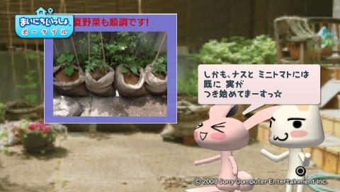 torosute2009/5/30 近場de摘み草 6