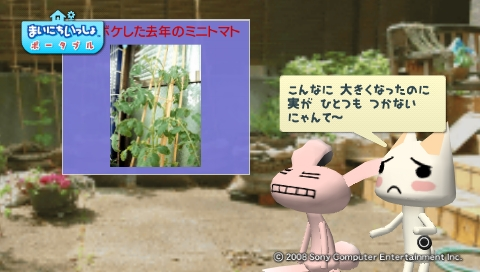 torosute2009/5/30 近場de摘み草 8