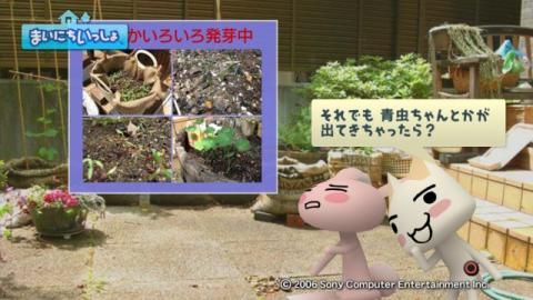 torosute2009/5/30 近場de摘み草 12