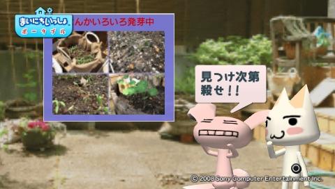torosute2009/5/30 近場de摘み草 14