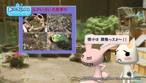 torosute2009/5/30 近場de摘み草 17