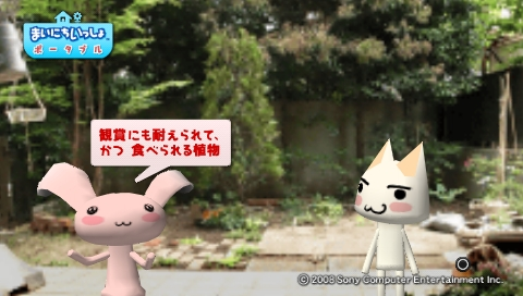torosute2009/5/30 近場de摘み草 20