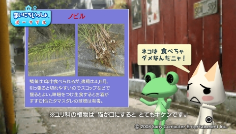 torosute2009/5/30 近場de摘み草 33