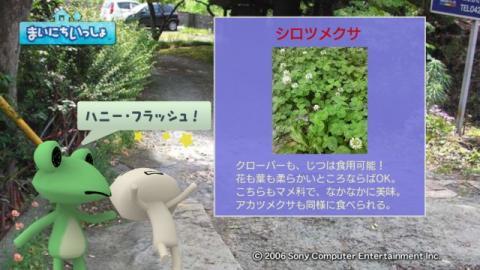 torosute2009/5/30 近場de摘み草 45