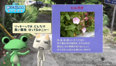 torosute2009/5/30 近場de摘み草 48