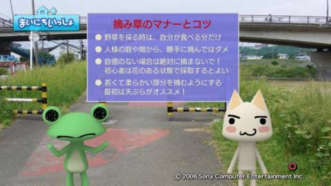 torosute2009/5/30 近場de摘み草 49