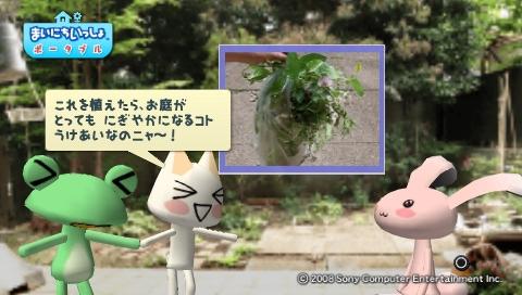 torosute2009/5/30 近場de摘み草 50