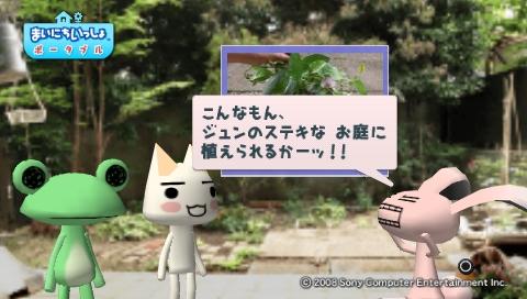 torosute2009/5/30 近場de摘み草 53