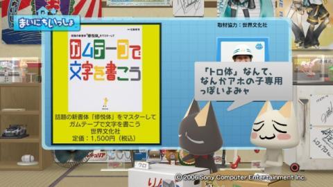 torosute2009/6/3 修悦体 29
