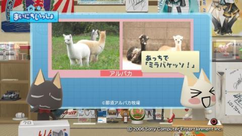 torosute2009/6/29 アルパカ 7
