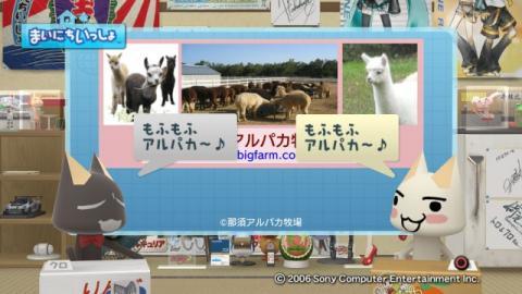 torosute2009/6/29 アルパカ 17