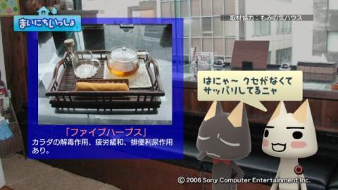 torosute2009/7/21 足湯カフェ 7