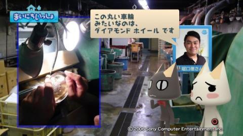 torosute2009/8/6 江戸切子 13