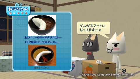 torosute2009/8/21 咲の作るカレー? 18