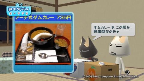 torosute2009/8/21 咲の作るカレー? 22