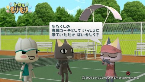 テニス 3