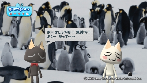 torosute2009/8/30 とろちゃ 38