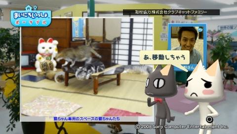 torosute2009/8/31 猫だ!PARK 8