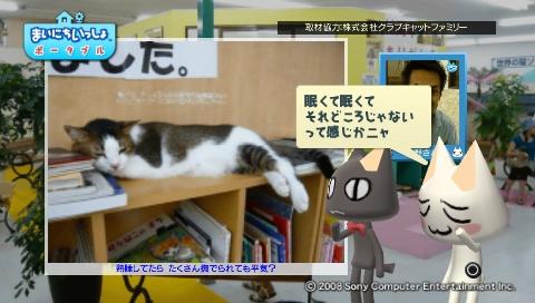 torosute2009/8/31 猫だ!PARK 12