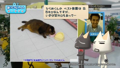 torosute2009/8/31 猫だ!PARK 18