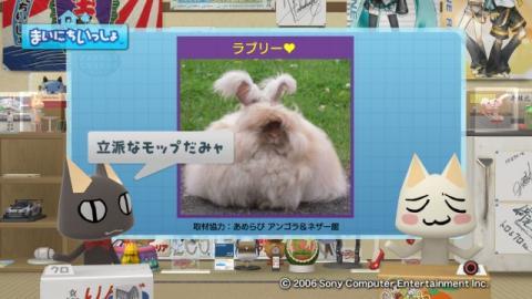 torosute2009/9/7 ウサギさん 4