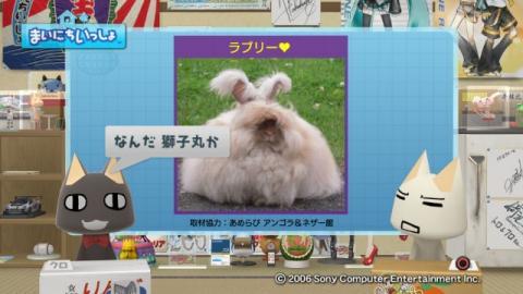 torosute2009/9/7 ウサギさん 5
