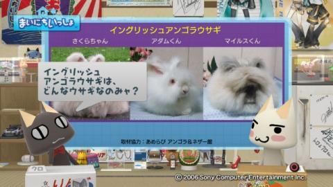 torosute2009/9/7 ウサギさん 9