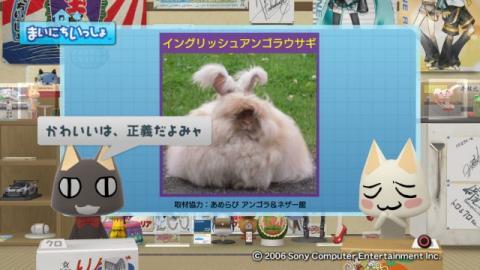 torosute2009/9/7 ウサギさん 12