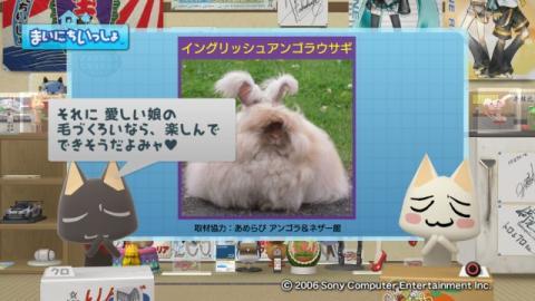 torosute2009/9/7 ウサギさん 13