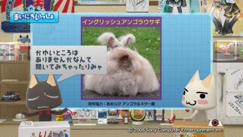 torosute2009/9/7 ウサギさん 14