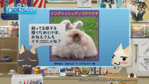 torosute2009/9/7 ウサギさん 15