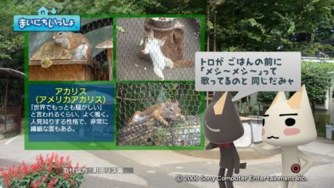 torosute2009/9/9 リス 6