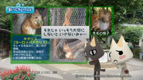 torosute2009/9/9 リス 7