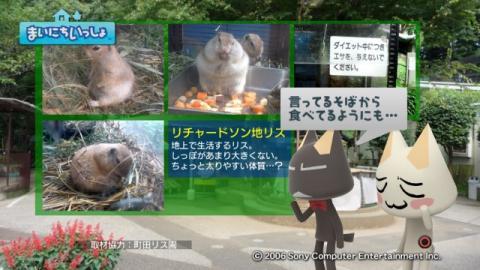 torosute2009/9/9 リス 8