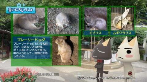 torosute2009/9/9 リス 9