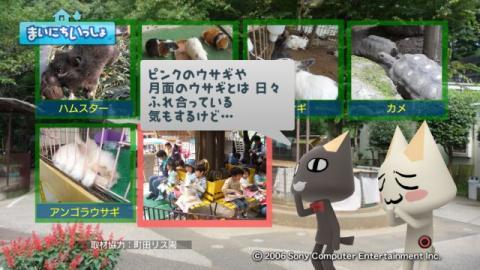 torosute2009/9/9 リス 11