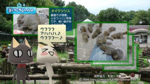 torosute2009/9/9 リス 14