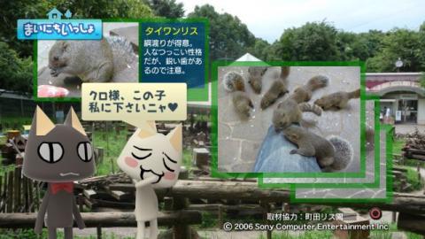 torosute2009/9/9 リス 15