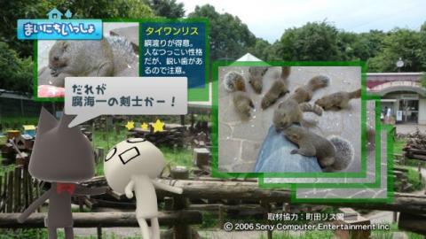 torosute2009/9/9 リス 16