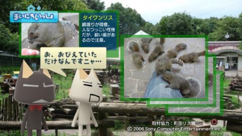 torosute2009/9/9 リス 18