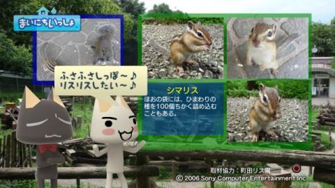 torosute2009/9/9 リス 20