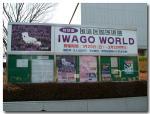 IWGO WORLD