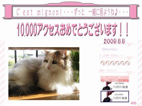 10000accessthankyoumira.jpg