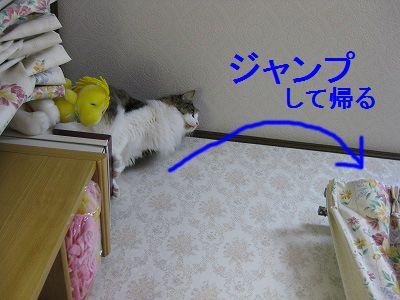 2-IMG_1371.jpg