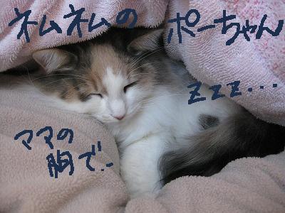 2-IMG_1667ぶネムネム