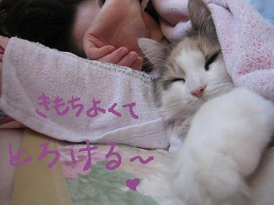 2-IMG_1696ぶネムネム