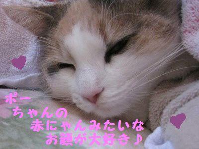 2-IMG_1722ぶネムネム