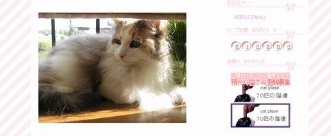 20090808-10000thankyoumira.jpg